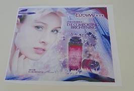 Vlaggendoek banner gedrukt door Eco-solventprinter van 1,6 m (5 voet) WER-ES160 4