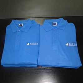 Polo shirt op maat bedrukt monster door A3 t-shirt printer WER-E2000T
